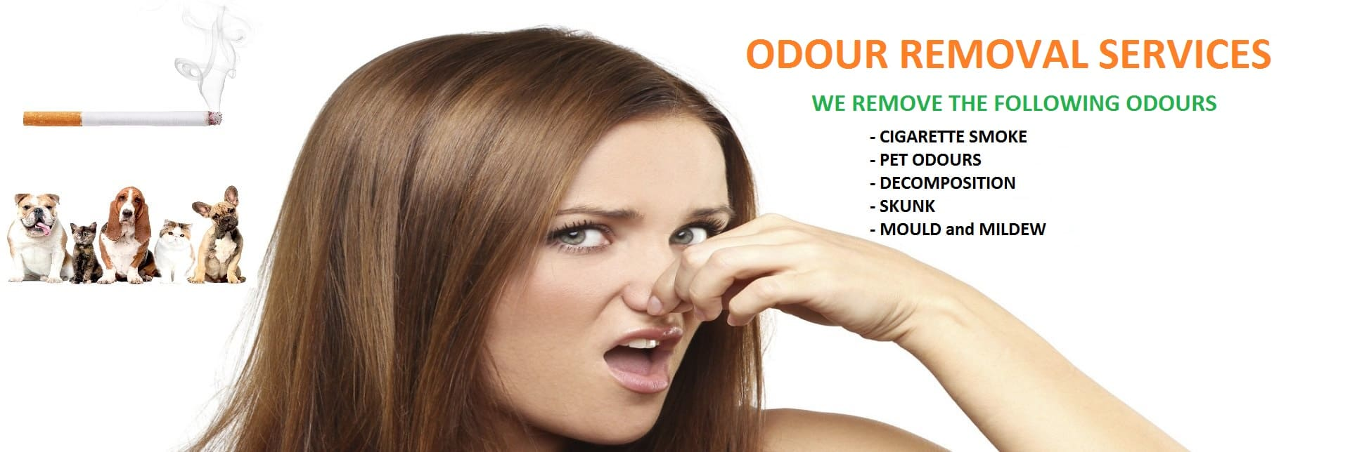 odour removal services ottawa