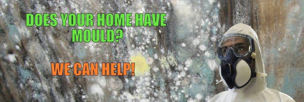 ottawa mold experts